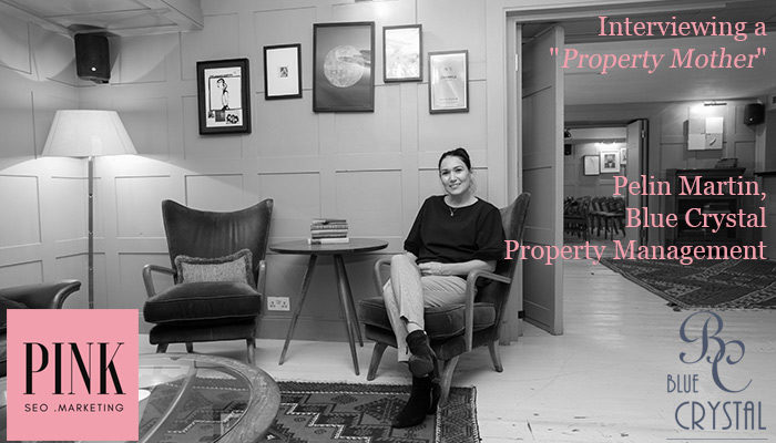 Pelin Martin Blue Crystal-Property Management